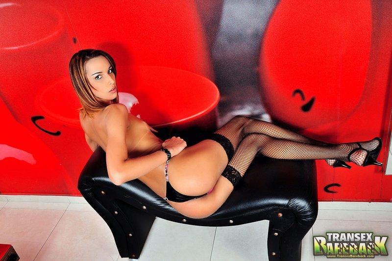 Viviane Merillo Shemale Beauty
